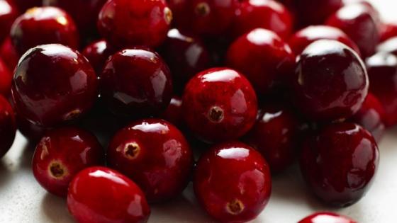 Easy Homemade Fresh Cranberry Sauce