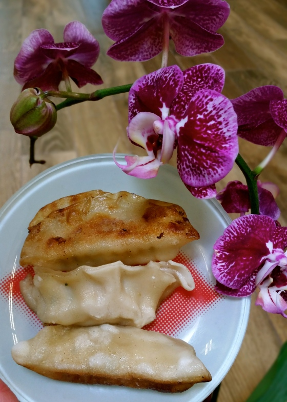 Potstickers for Chinese New Year