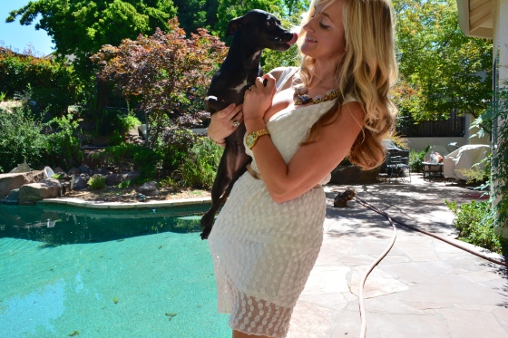 How To Style A LWD?  With Puppies!  Or a statement necklace, whatever works!