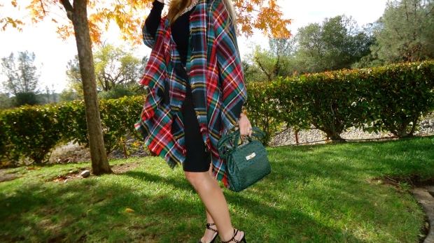Basic Fall Must Have:  Plaid Blanket Scarf