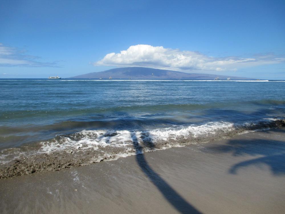 Maui Must Haves