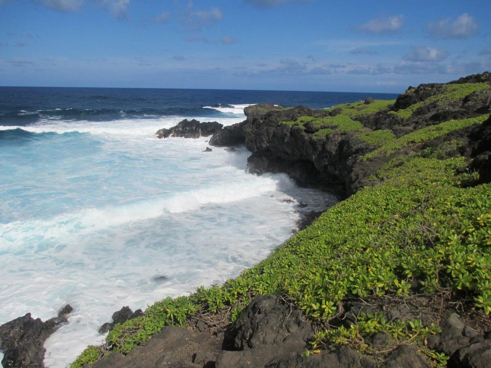 Maui Must Haves!