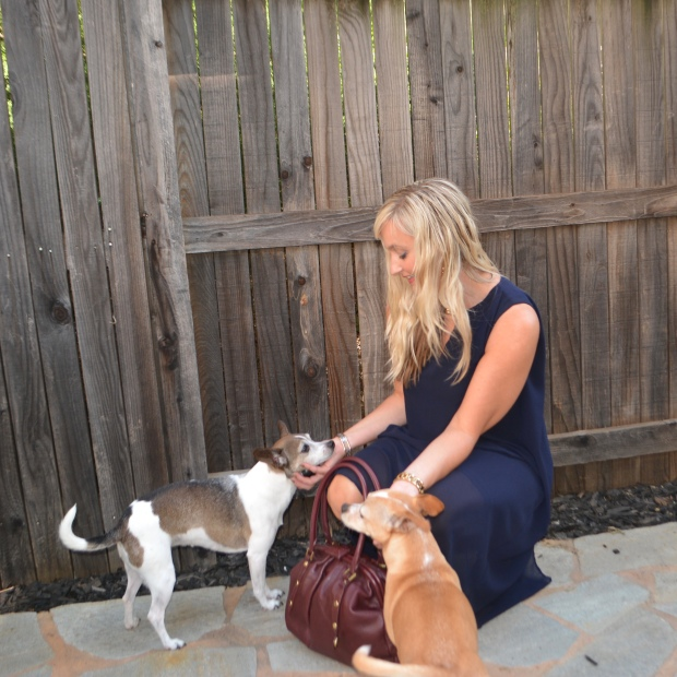 Pups love fall dresses!